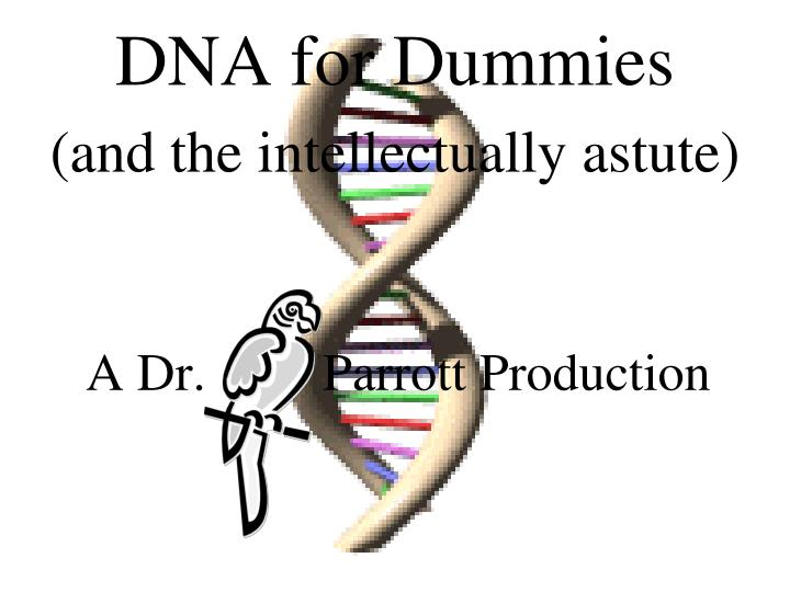 Dna for dummies and the intellectually astute