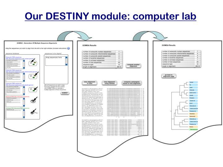 Our DESTINY module: computer lab