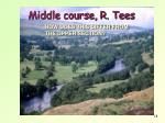 middle course r tees