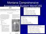 montana comprehensive assessment system montcas1