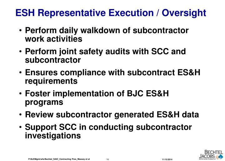 ESH Representative Execution / Oversight