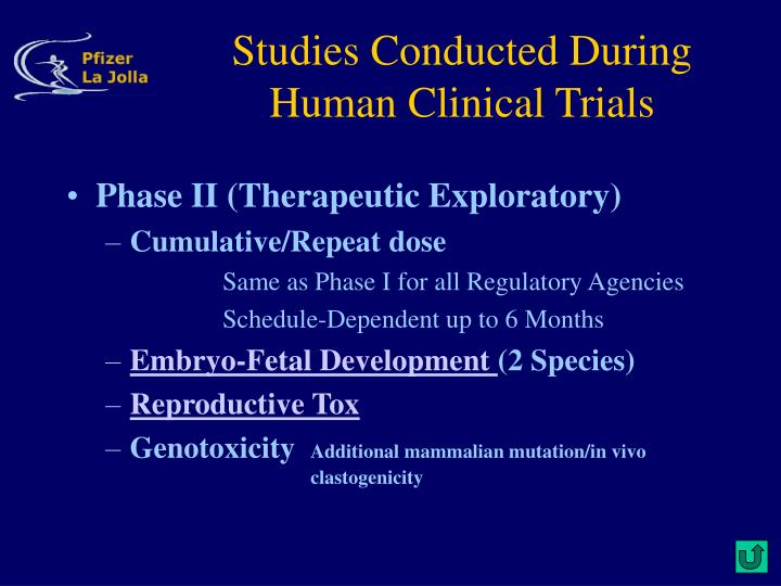 Studies Conducted During Human Clinical Trials