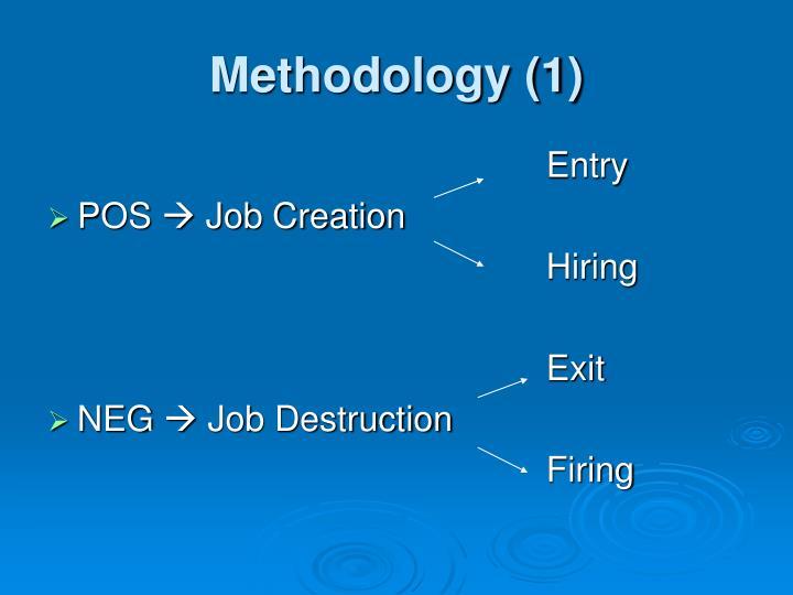 Methodology (1)