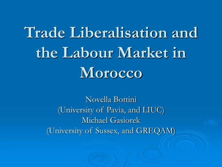 Trade liberalisation and the labour market in morocco