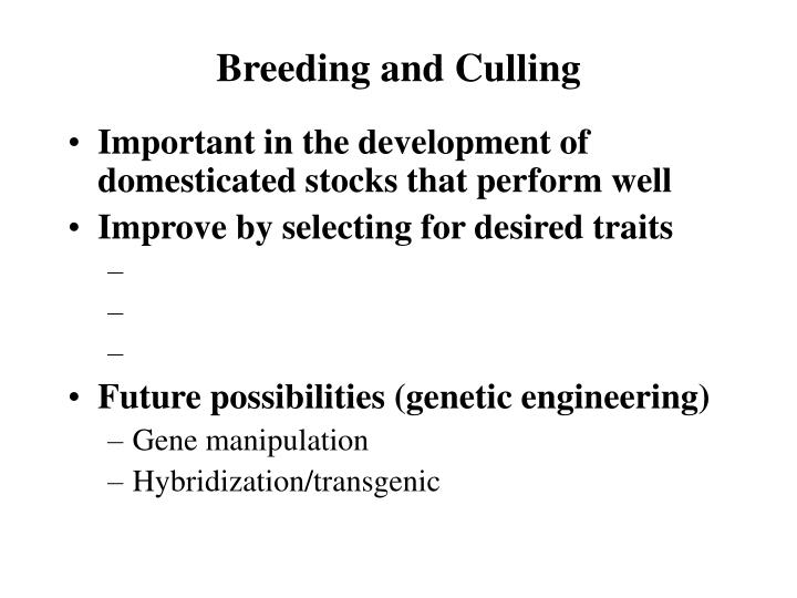 Breeding and Culling