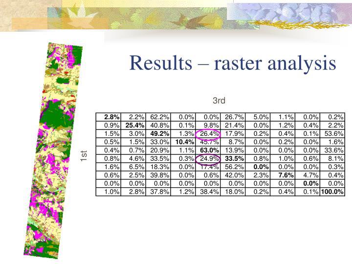Results – raster analysis