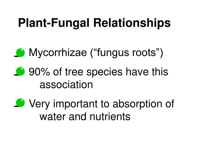 Plant-Fungal Relationships