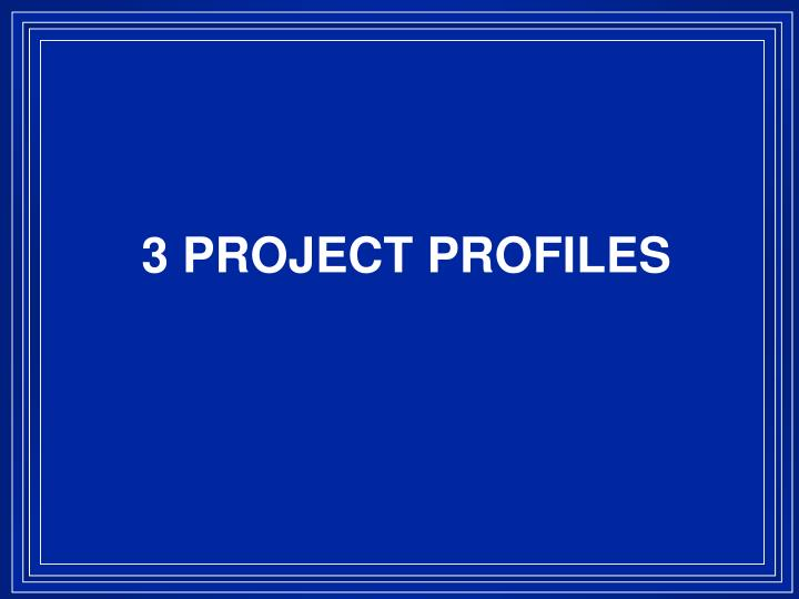 3 PROJECT PROFILES