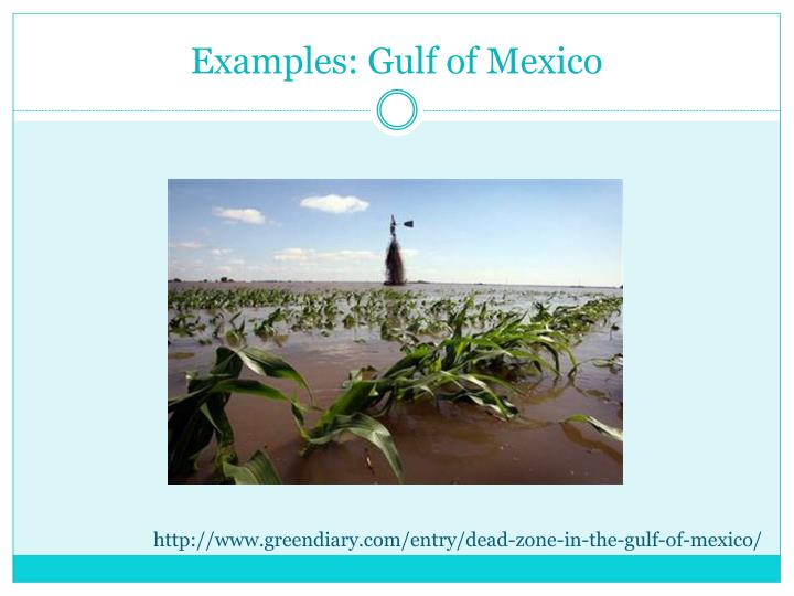 Examples: Gulf of Mexico