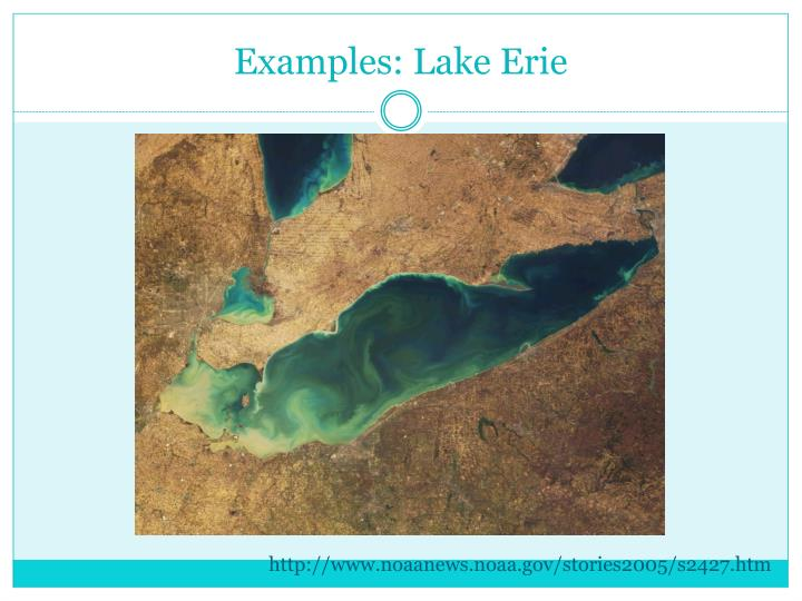 Examples: Lake Erie