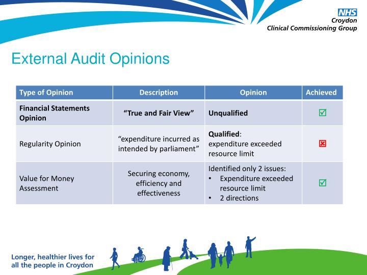 External Audit Opinions