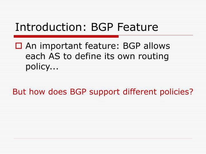Introduction: BGP Feature