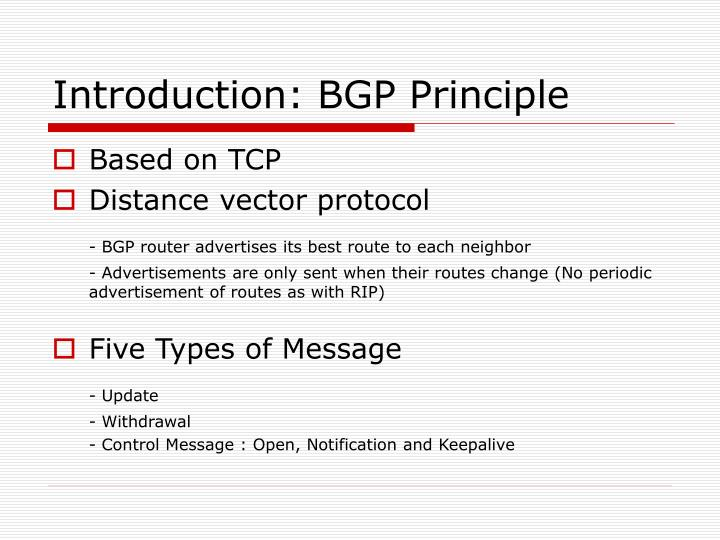 Introduction: BGP Principle