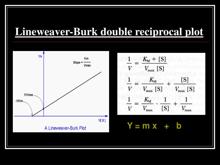 Lineweaver-Burk double reciprocal plot