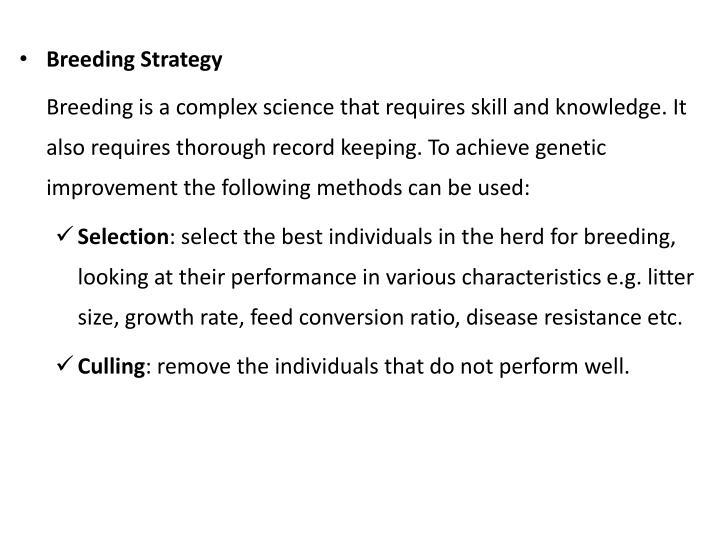 Breeding Strategy
