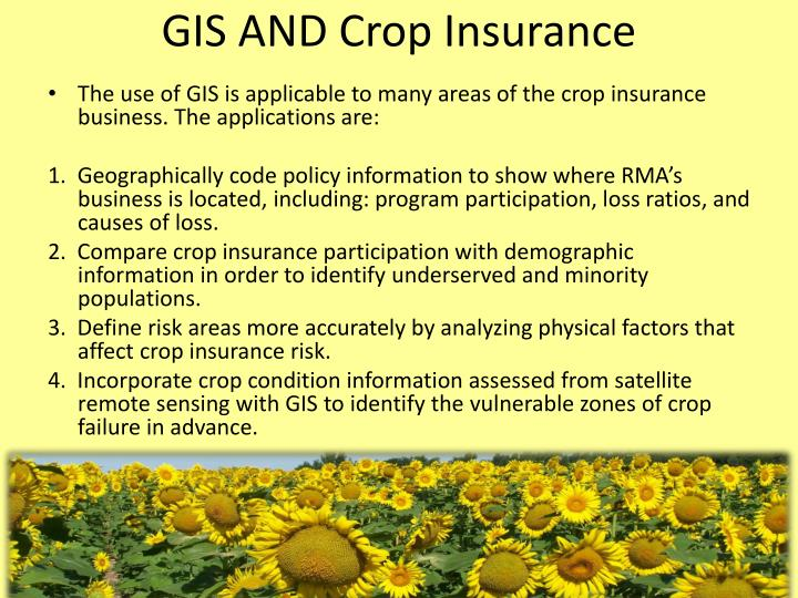 gis and australian agriculture essay Forestry encompasses the critically important management of natural forests and woodlands, plantations and agroforestry, through the practical application of scientific, economic and social principles.