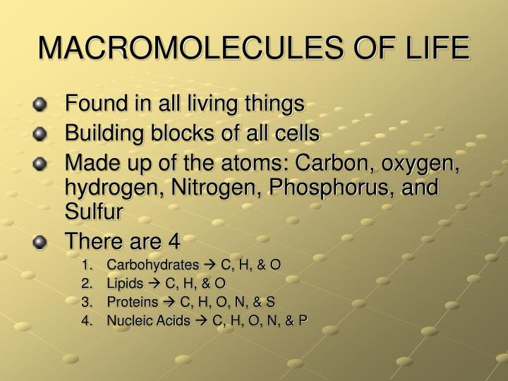 macromolecules of life Macromolecules made from acids, nucleic acids are made from nucleotides,  organic macromolecules cloze worksheet author: info@qldscienceteacherscom.