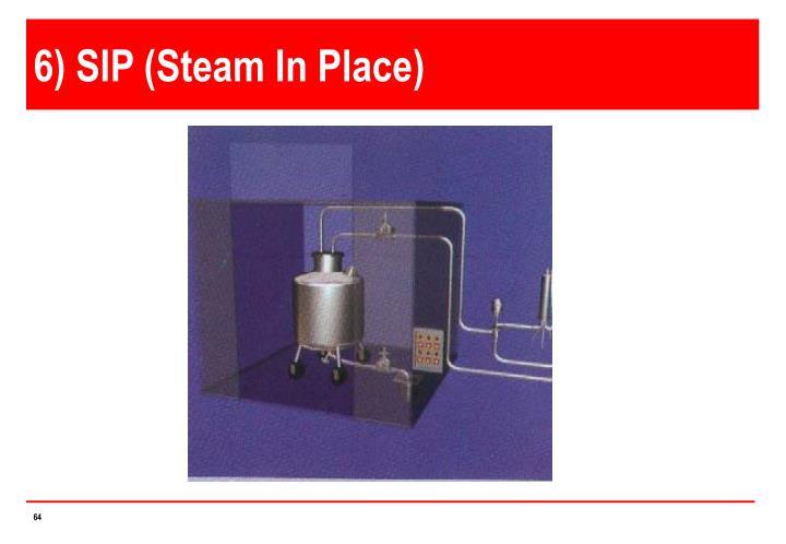 6) SIP (Steam In Place)