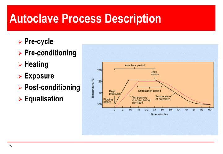 Autoclave Process Description