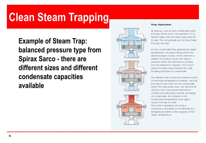 Clean Steam Trapping
