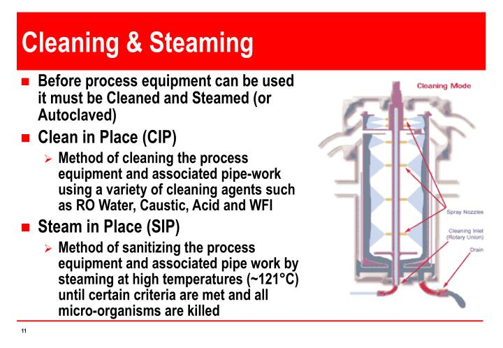 Cleaning & Steaming