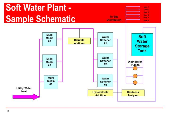 Soft Water Plant -