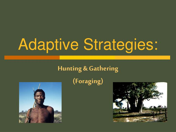 foraging pastoralism horticulture agriculture and insutrialism strategies used by different societie The difference between horticulture and agriculture is how are economic systems different in various societies pastoralism: a food-getting strategy.