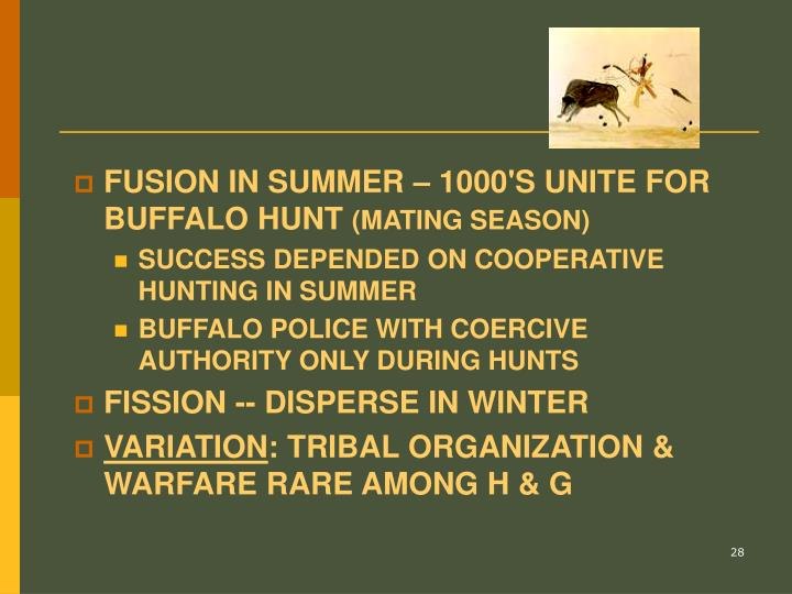 FUSION IN SUMMER – 1000'S UNITE FOR BUFFALO HUNT