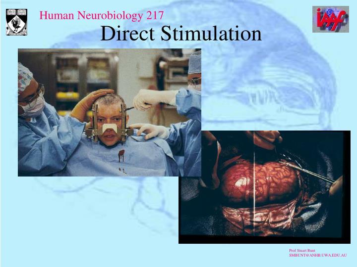 Direct Stimulation