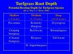 turfgrass root depth potential rooting depth for turfgrass species dr l wu u c davis 1985