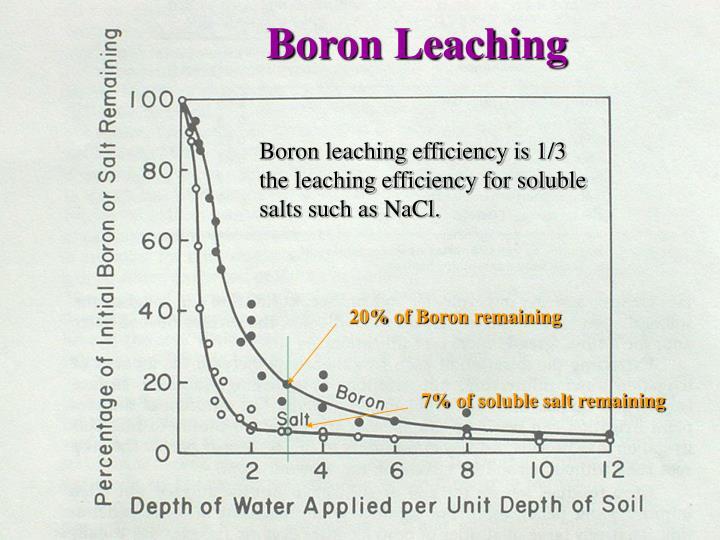 Boron Leaching