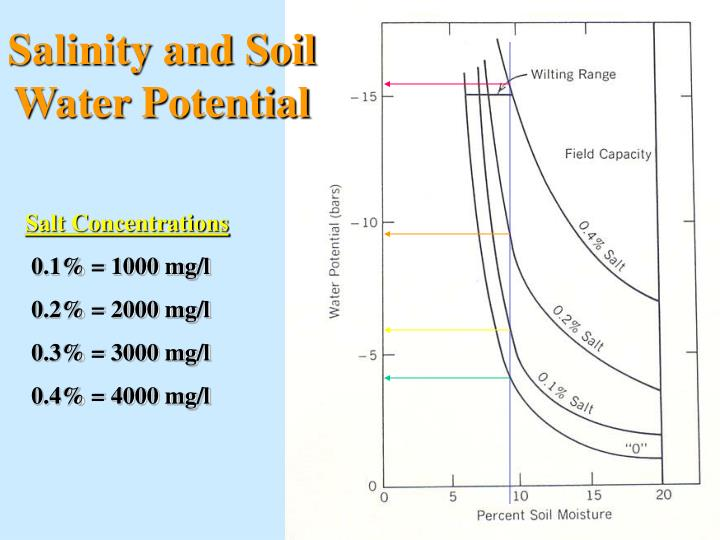 Salinity and Soil Water Potential