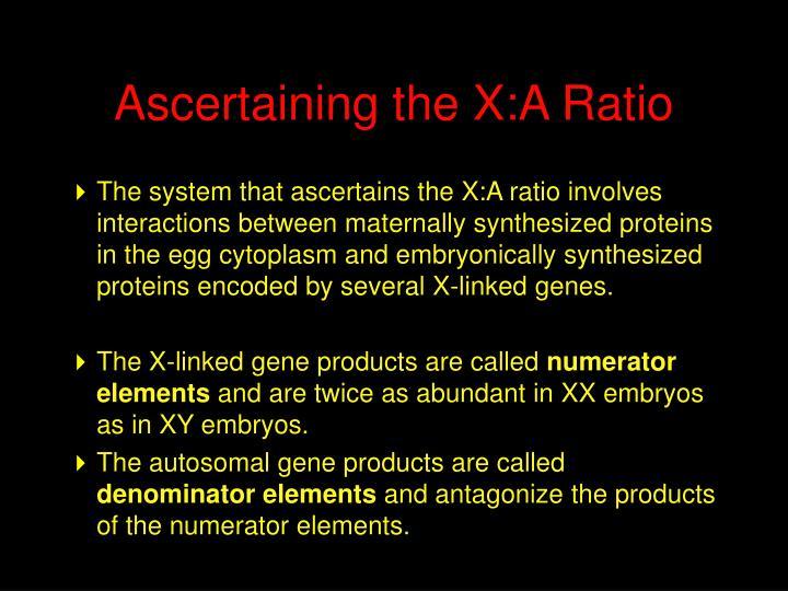 Ascertaining the X:A Ratio