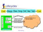 lifecycles