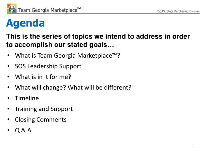 What is Team Georgia Marketplace™?