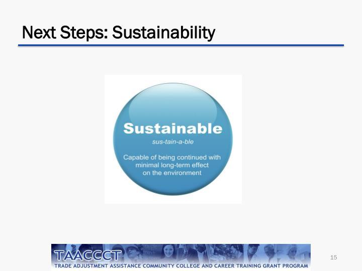 Next Steps: Sustainability