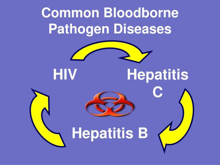 Common Bloodborne Pathogen Diseases