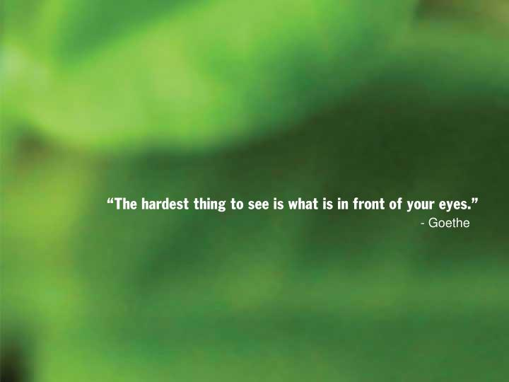 the hardest thing to see is what is in front of your eyes n.