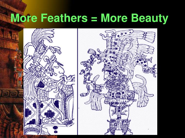 More Feathers = More Beauty
