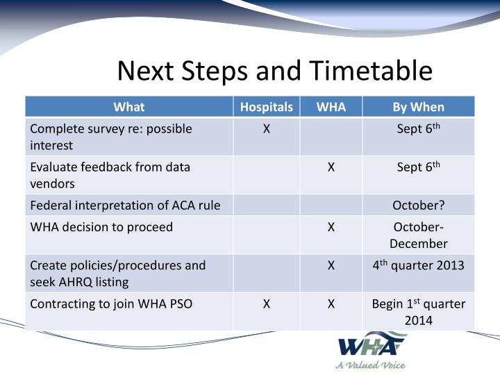 Next Steps and Timetable