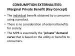 consumption externalities marginal private benefit key concept