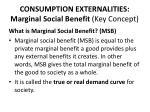 consumption externalities marginal social benefit key concept