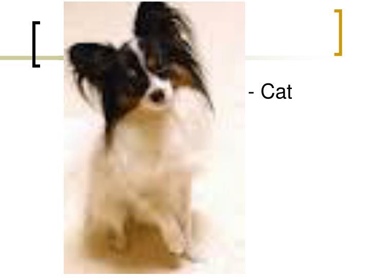 - Cat