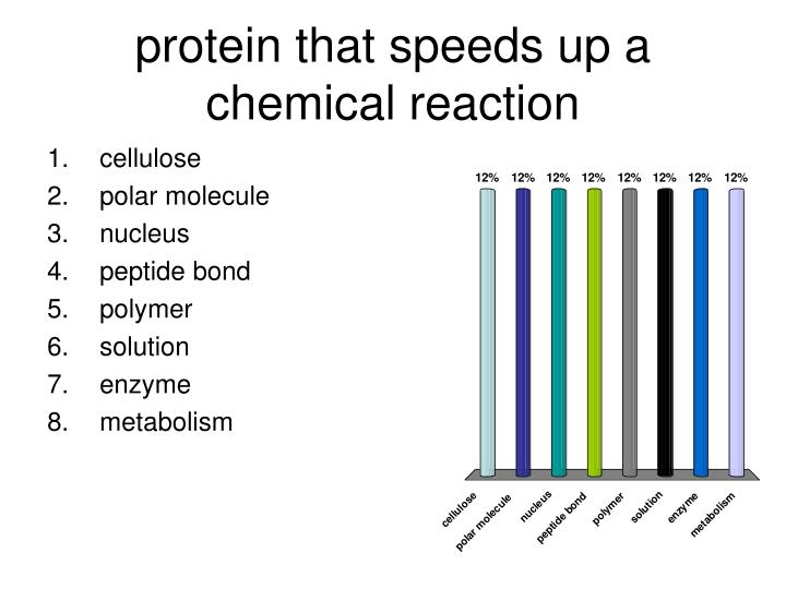 protein that speeds up a chemical reaction