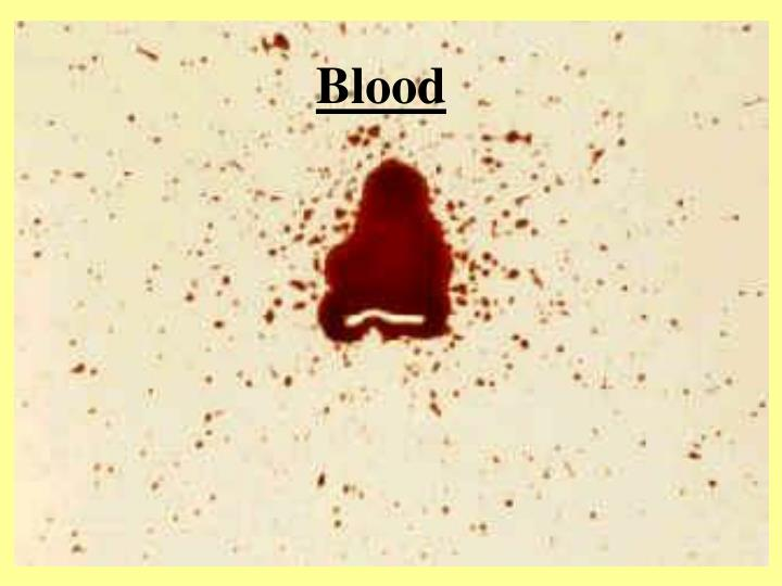 blood spatter research paper With over 55,000 free research papers as well as what the author's research is about and how this methodology assists in this blood spatter analysis the blood.