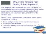 why are the template task scoring rubrics important