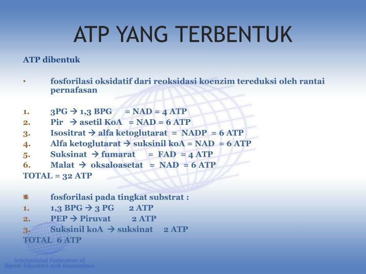 ATP YANG TERBENTUK