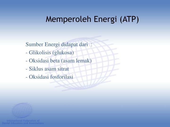 Sumber Energi didapat dari  :