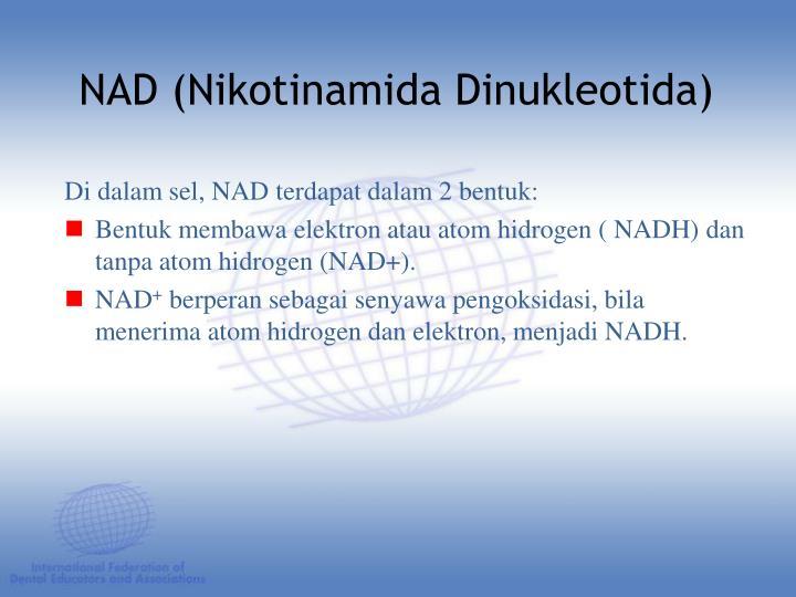 Di dalam sel, NAD terdapat dalam 2 bentuk: