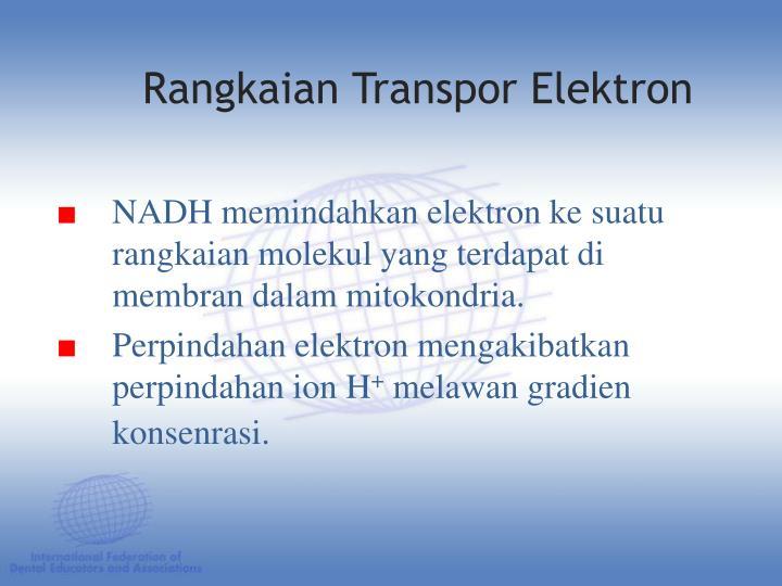 NADH memindahkan elektron ke suatu rangkaian molekul yang terdapat di membran dalam mitokondria.